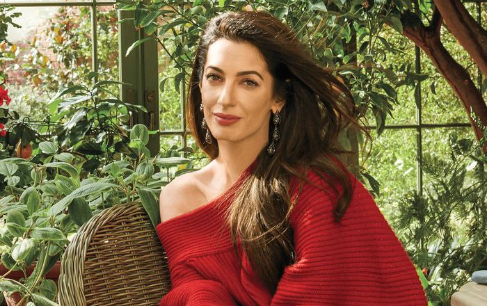 Amal Clooney Height, Weight, Age, Wiki, Bio, Net Worth, Facts