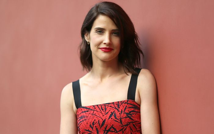 Cobie Smulders Bio Age Height Weight Husband Net Worth Facts