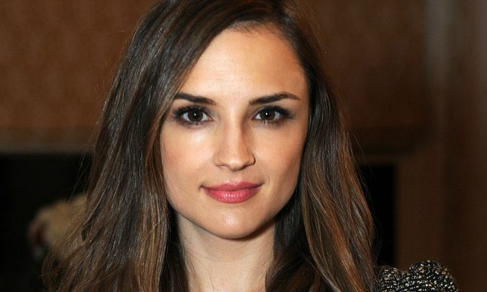 Rachael Leigh Cook Biography